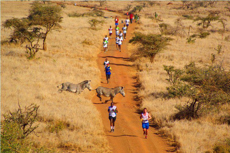 Kenya Safari Marathon