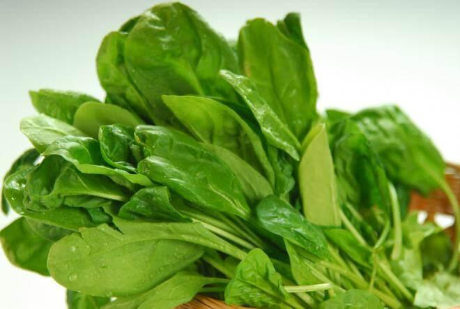 الخضروات الورقيه