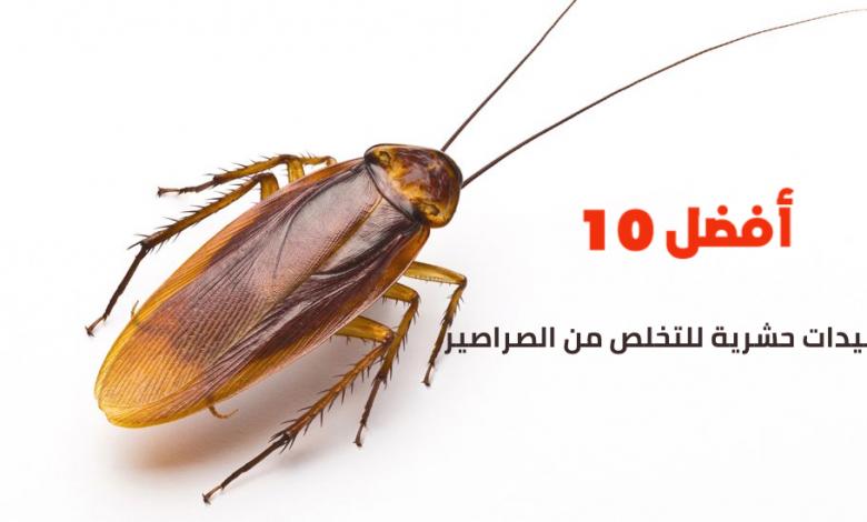أفضل 10 مبيدات حشرية للتخلص من الصراصير أفضل 10