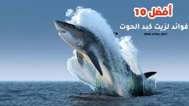 أفضل 10 فوائد لزيت كبد الحوت