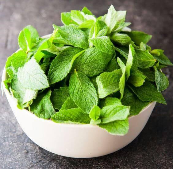 النعناع أحد أفضل 10 أعشاب للقولون والانتفاخ
