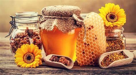 رفع المناعة من أفضل 10 فوائد لغذاء ملكات النحل