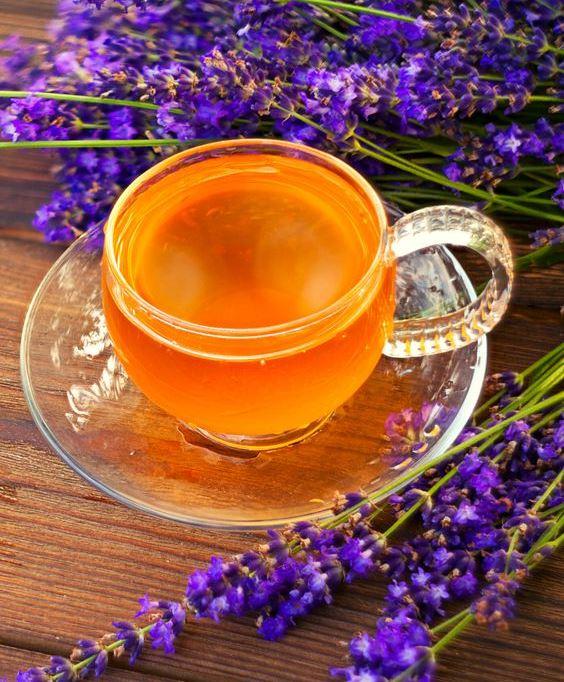 شاي الخزامى أفضل 10 مشروبات لعلاج ارتجاع المرئ