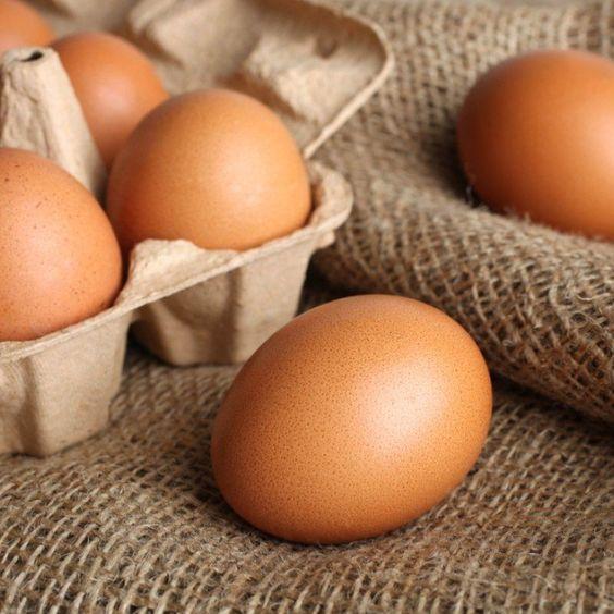 البيض